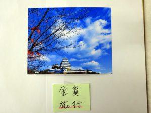 親睦旅行部門 【金賞】 『秋の終り』 ~ 岡崎支部 伊藤 孝光
